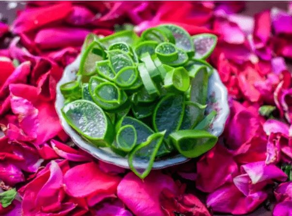 DIY Aloevera Rose Gel for Clear Skin | Homemade Soothing Gel