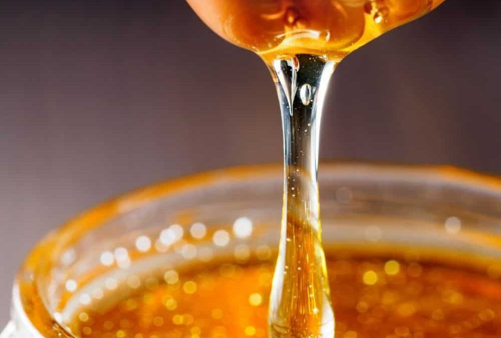 Does Honey Help You Lose Weight?